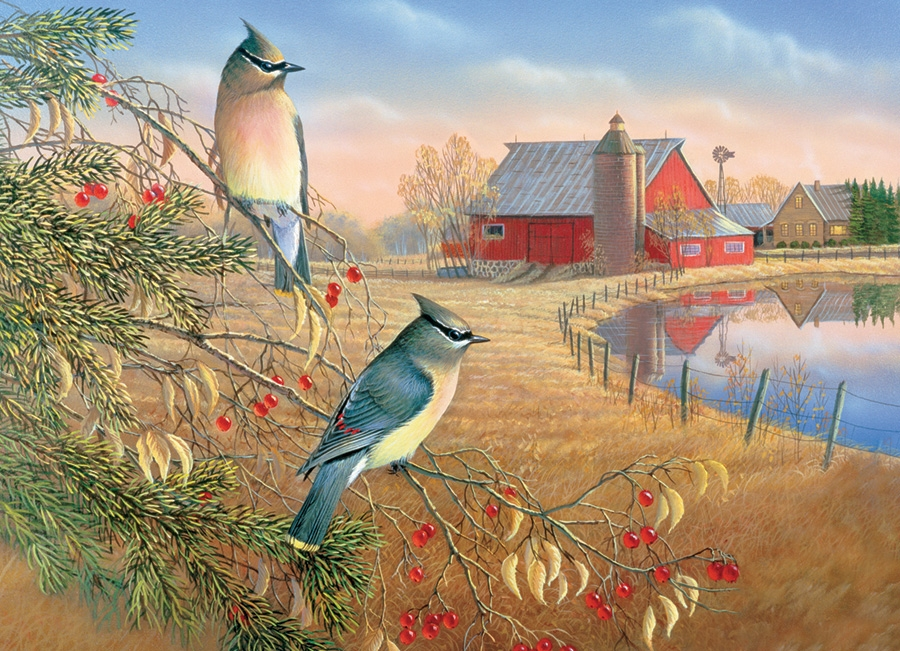 Cobble Hill Jigsaw Puzzle - 1000pcs - Cedar Waxwings