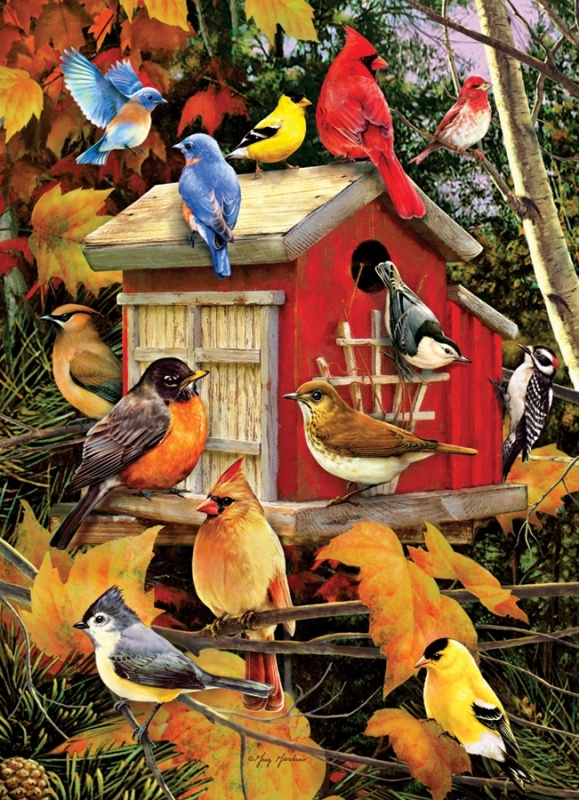 Cobble Hill Jigsaw Puzzle - 1000pcs - Fall Birds