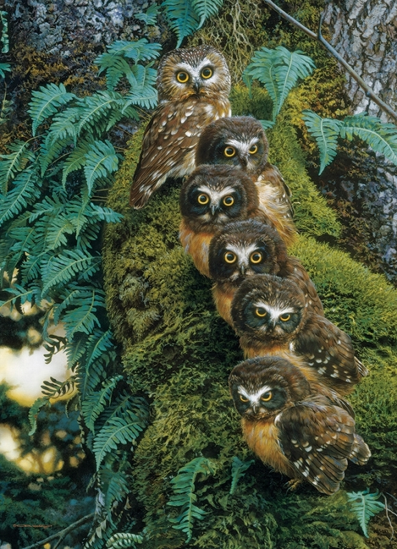 Cobble Hill Jigsaw Puzzle - 1000pcs - Family Tree Owls