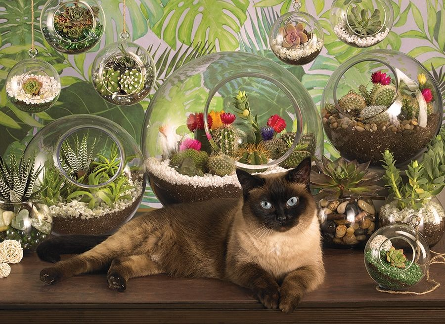 Cobble Hill Jigsaw Puzzle - 1000pcs - Terrarium Cat