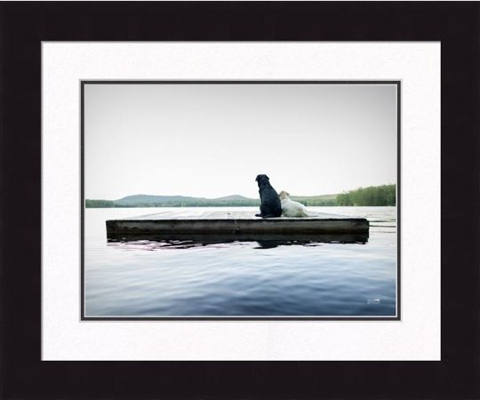 Framed Picture - Adrift -16x20 - Ron Schmidt