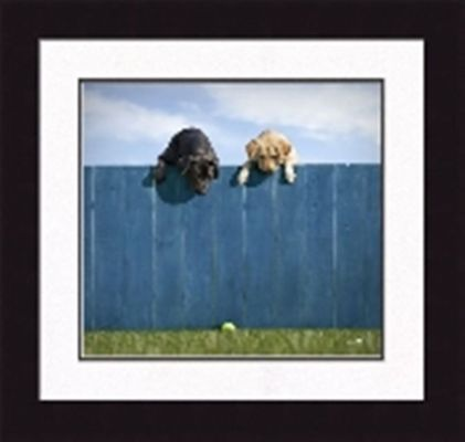 Framed Picture - Out of the Park - 20x21 - Ron Schmidt