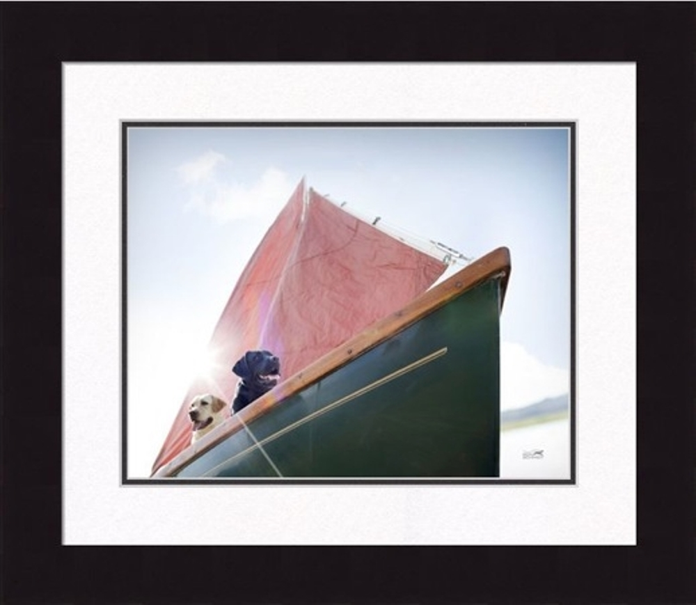 Framed Picture - Salty Dogs - 20x16 - Ron Schmidt