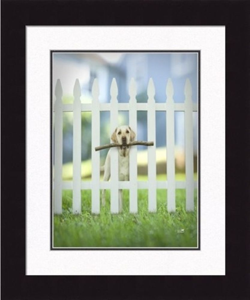 Framed Picture - Sawyer - 16x16 - Ron Schmidt
