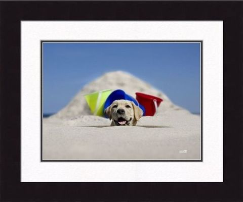 Framed Picture - Scoop - 20x16 - Ron Schmidt