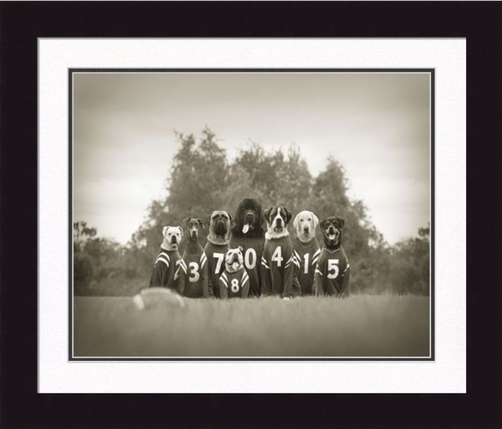 Framed Picture - The Bonecrushers - 16x20 - Ron Schmidt
