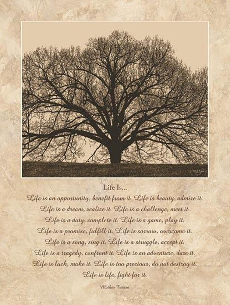 Framed Print - Life Is - 12x16 - John Jones