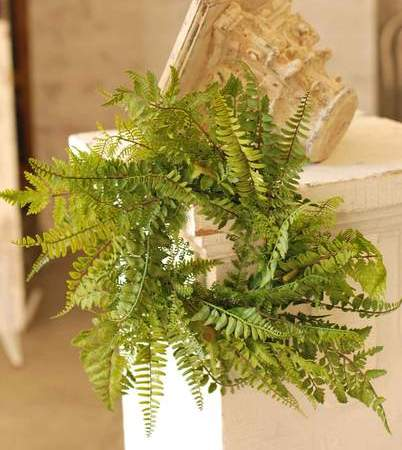 Green Leaf Wreath - Mixed Fern - 20 Inch