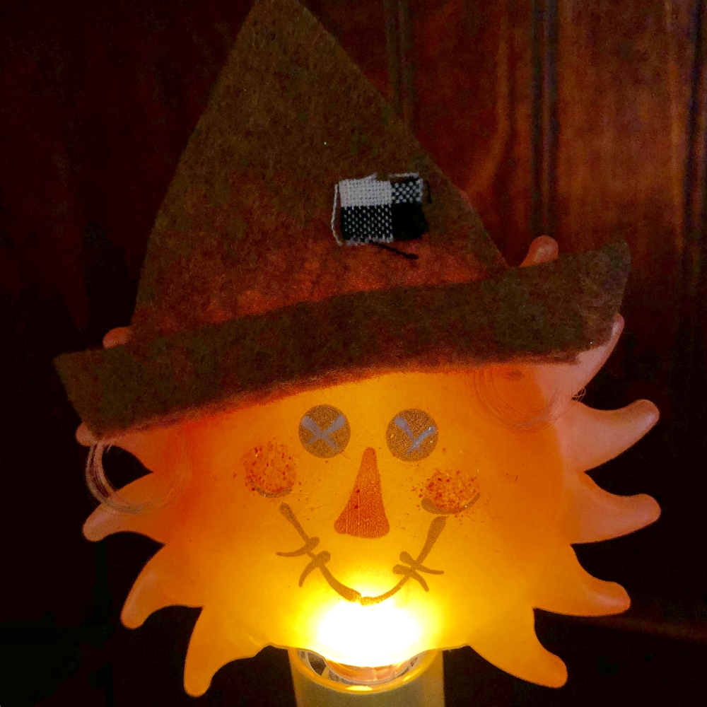 Scarecrow Light Bulb - Candelabra Base - 4 Watts