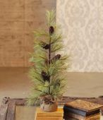 Long Needle Pine Tree with Cones - Table Top Tree - 2 Foot