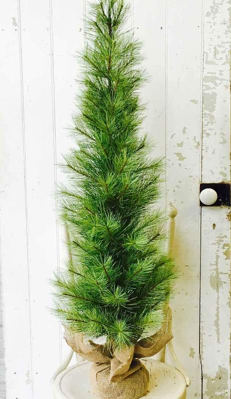Long Needle Pine Twig Tree - Table Top Christmas Tree - 4 Foot