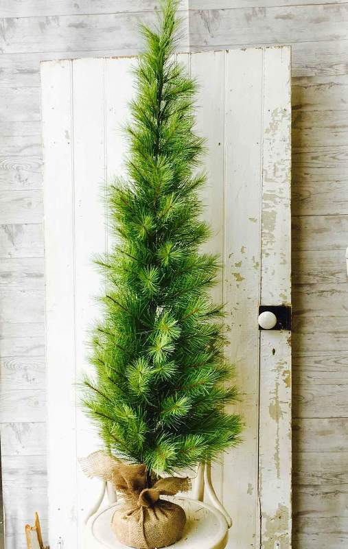 Long Needle Pine Twig Tree - Table Top Christmas Tree - 5 Foot