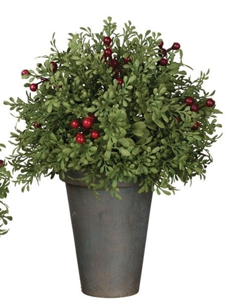 Mini Leaf & Berry Arrangement - Potted - 10in