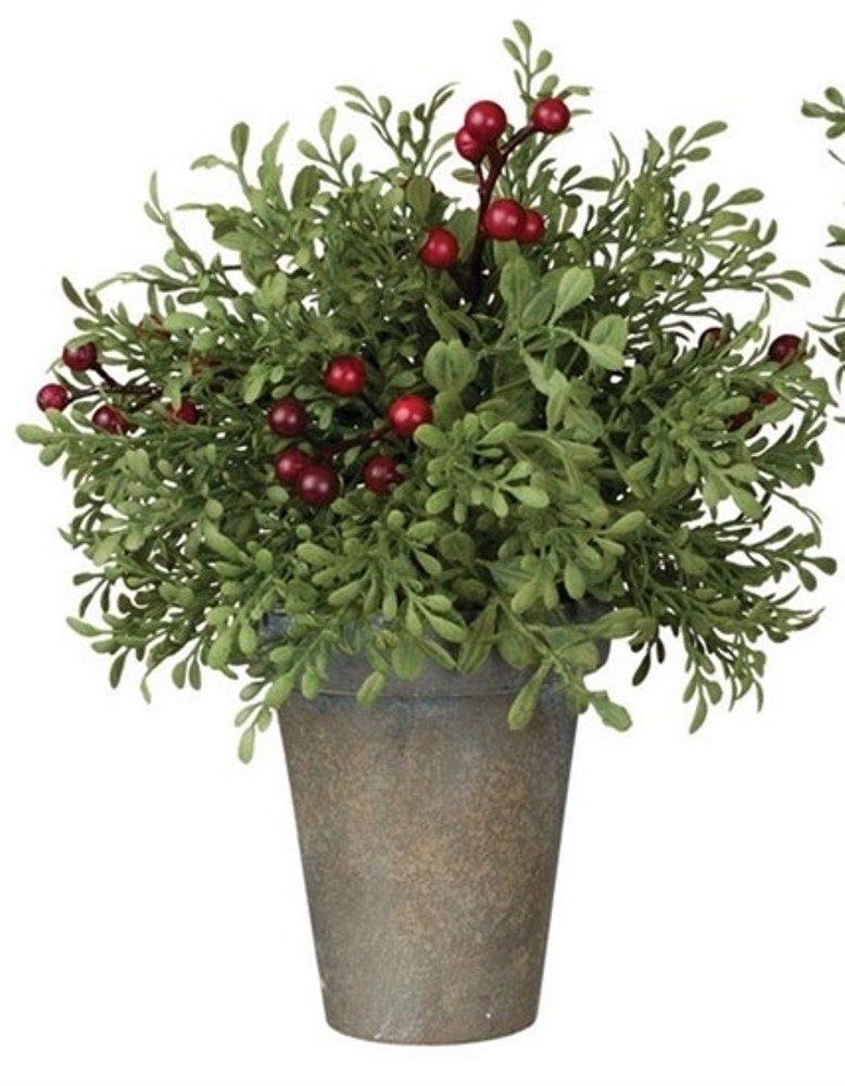 Mini Leaf & Berry Arrangement - Potted - 8in