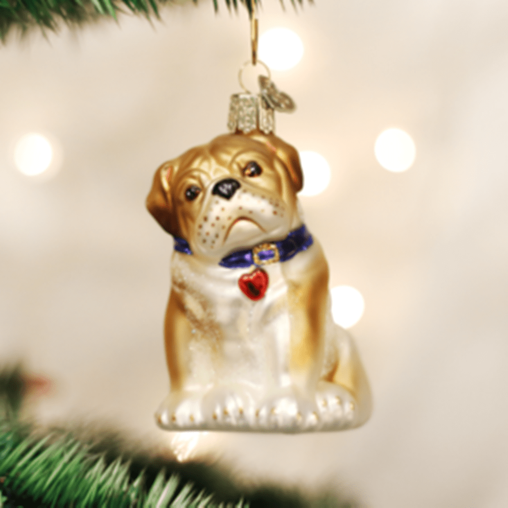 Old World Christmas Ornament - Bull Pup