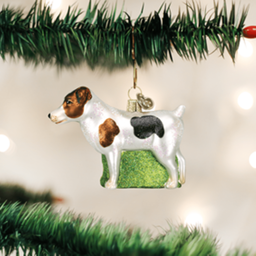 Old World Christmas Ornament - Jack Russell Terrier