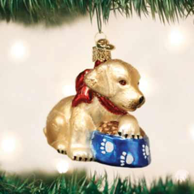 Old World Christmas Ornament - Labrador Pup