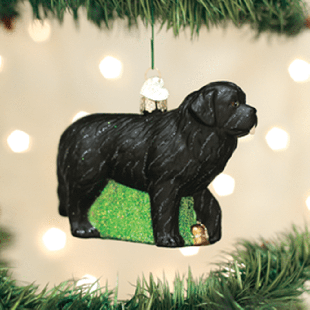 Old World Christmas Ornament - Newfoundland