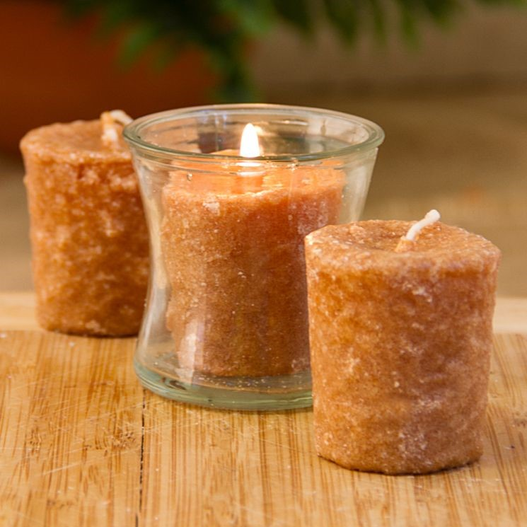 Votive Cake Candle - Caramel Coffee Cake - 1in x 2in - 3 Pack