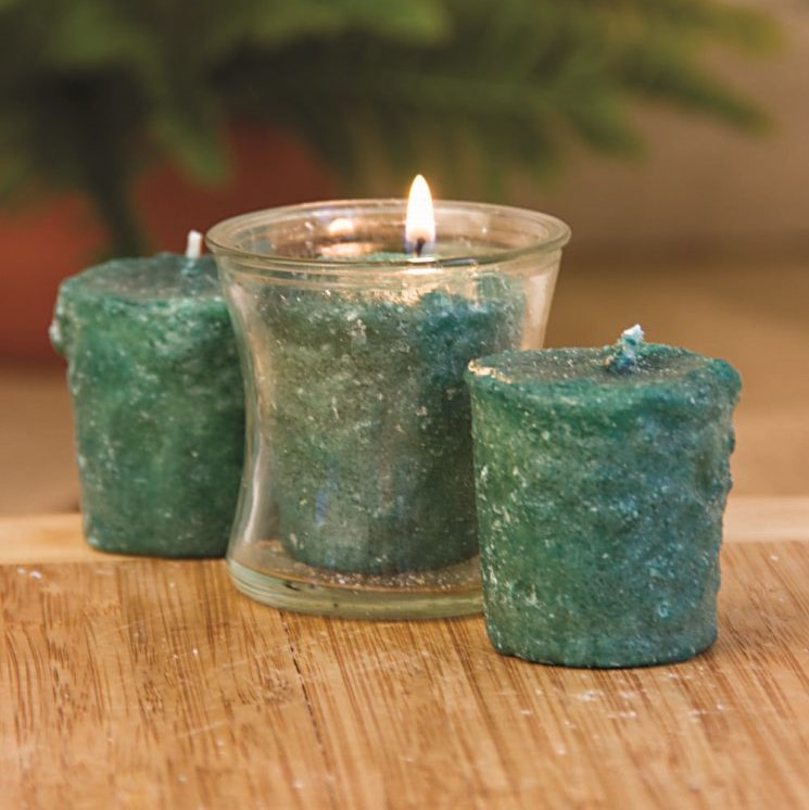 Votive Cake Candle - Northern Pine - 1in x 2in - 3 Pack