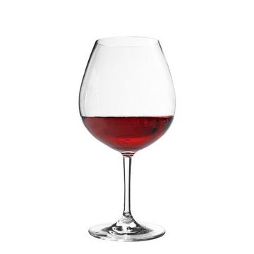 Sonoma Tritan™ Unbreakable Bubble Wine Glass