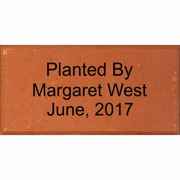 Engraved Gift Brick