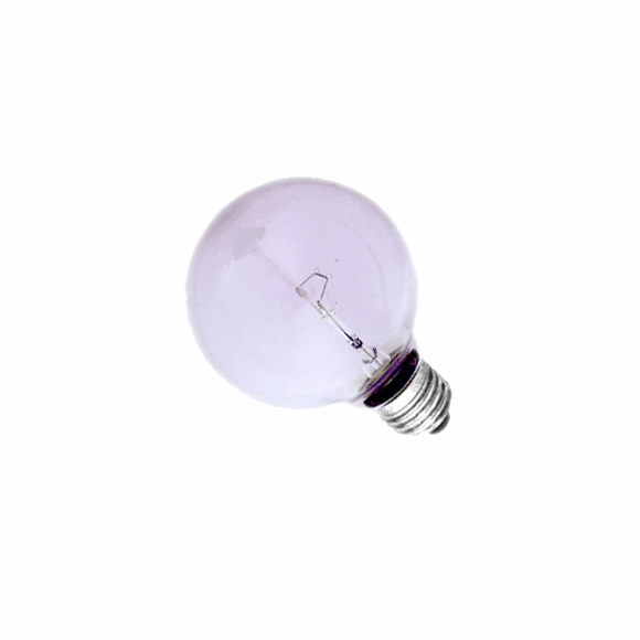 G25 Full Spectrum globe lightbulb