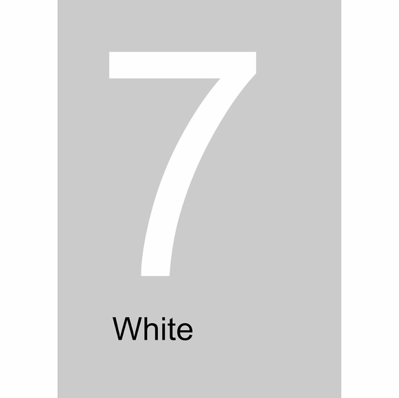 Large White House Numbers