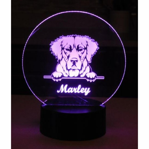 Personalized Dog Image Night Light or Table Decoration