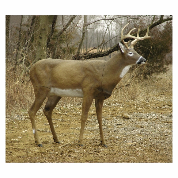 Realistic Whitetail Deer Statue