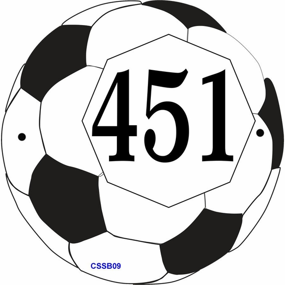 Soccer Ball Shape Address Sign