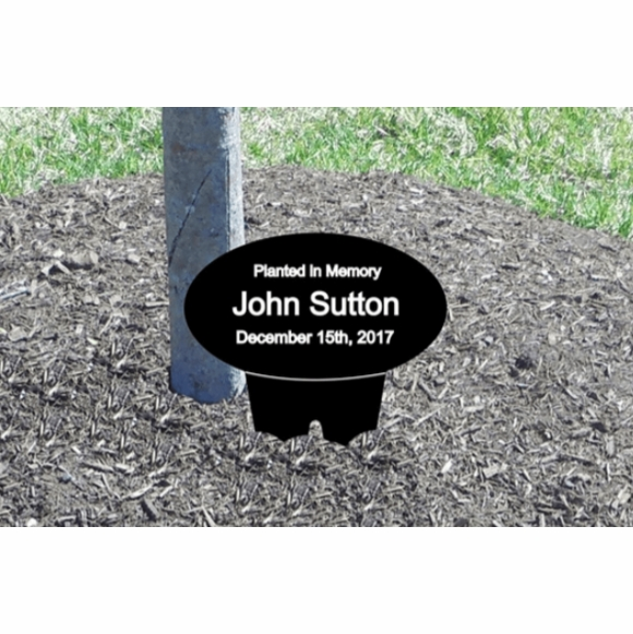 Tree Tag - Custom Engraved - For Memorial, Dedication, Recognition, Identification