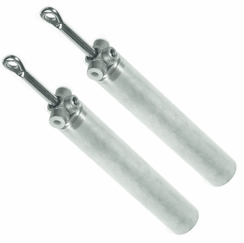 Ford Mustang Convertible Top Lift Cylinder Ram (1 Set 2 Cylinders) 1999-2004