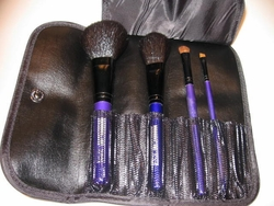 Deluxe Brush Set with Black Leather Case