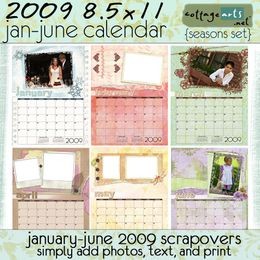 2009 8.5x11 Calendar Pak - Seasons - January-June