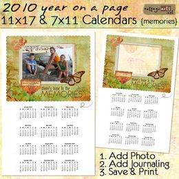 2010 11x17 & 7x11 Yearly Calendars - Memories