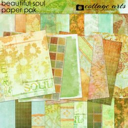Beautiful Soul Paper Pak