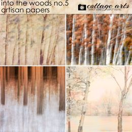 Into the Woods 5 Artisan Papers