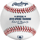 Rawlings Official 2019 Florida Spring Training MLB Baseball - Model Number: ROMLBSTFL19