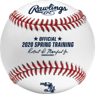 Rawlings Official 2020 Florida Spring Training MLB Baseball - Model Number: ROMLBSTFL20