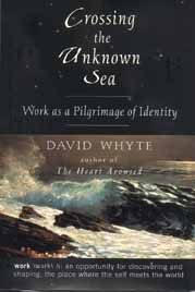 Crossing the Unknown Sea: Work as a Pilgrimage of Identity (hardcover)