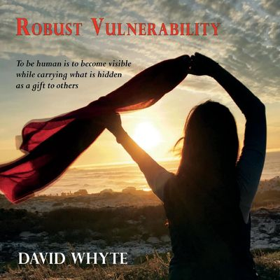 Robust Vulnerability - 2CD set
