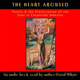 The Heart Aroused: Poetry & The Preservation of the Soul in Corporate America (abridged) - 3 CDs
