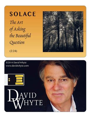 USB Flash Drive - Solace: The Art of Asking the Beautiful Question