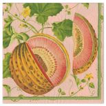 Cocktail Napkins Melon Pink