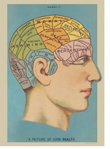 Decorative Art Prints Phrenology Head Poster