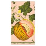 Hand Towels Melons Pink