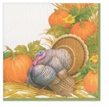 Thanksgiving Napkins Dinner Turkey Decor