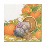 Thanksgiving Napkins Lunch Turkey Decor