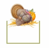 Thanksgiving Place Cards Turkey Decor